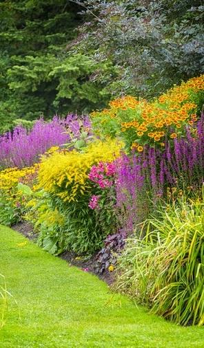Plantation végétation - Aménagement de jardin