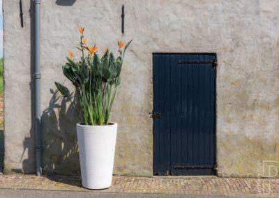 Aménagement de jardin poterie