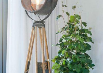 Pot blanc plante Pottery Pots