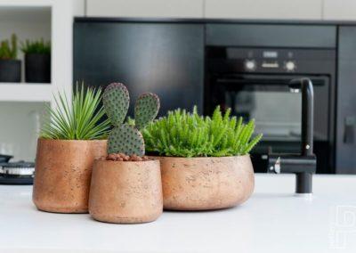 Pot décoration cuisine plante cactus Pottery Pots