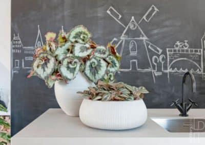 Pottery Pots cuisine plantes